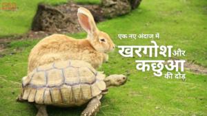 Read more about the article खरगोश और कछुआ की दौड़ – एक नए अंदाज में