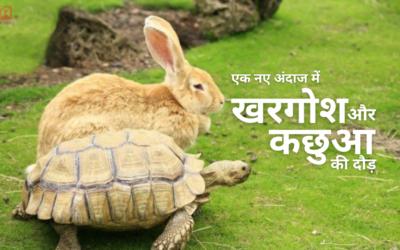 खरगोश और कछुआ की दौड़ – एक नए अंदाज में